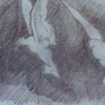 DIBUJOS Y BOCETOS (13)